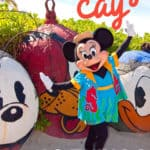 26 Things to Know Before You Visit Disney Castaway Cay 1