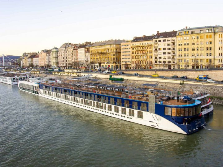 Ama Viola in Budapest on the Danube
