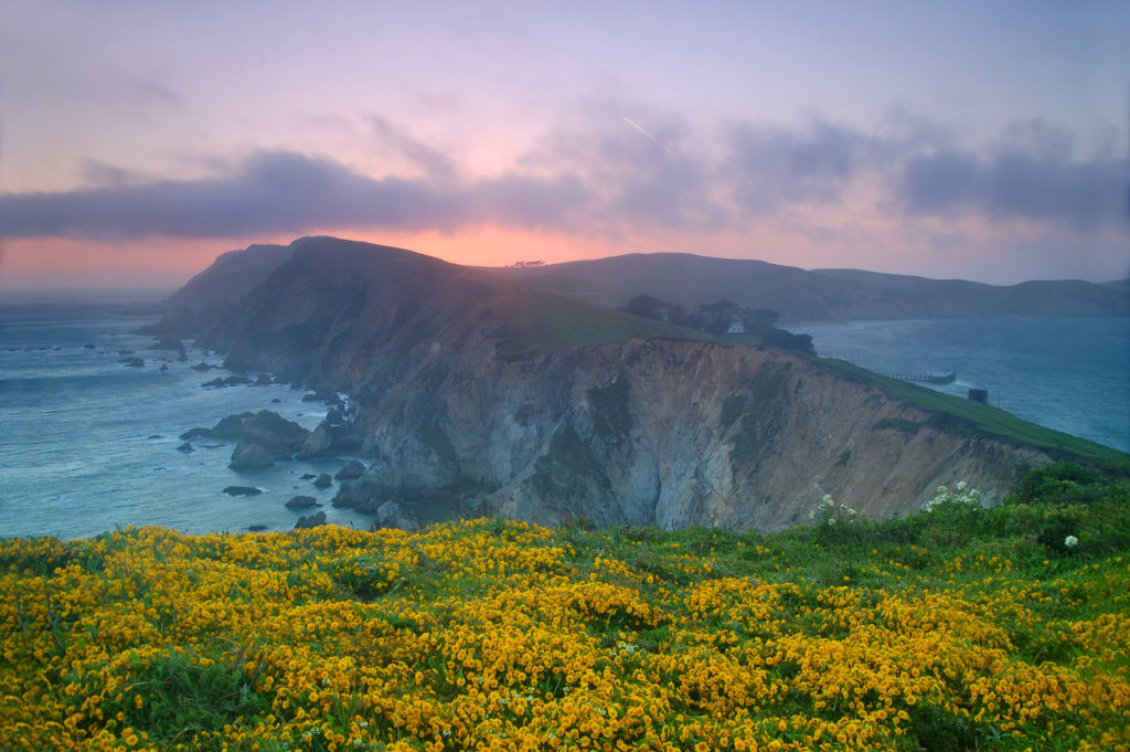 Exploring Point Reyes is one of the great things to do in Northern California