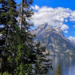 14 Fun Things To Do in Grand Teton National Park with Kids 2