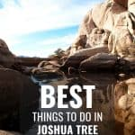 Joshua Tree National Park- When to Visit, Things to do, Best Hikes, & More! 2