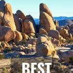 Joshua Tree National Park- When to Visit, Things to do, Best Hikes, & More! 3