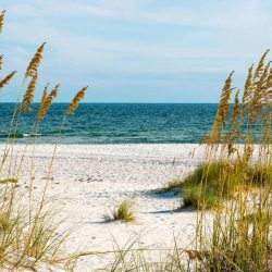 Top 10 Things to Do in Alabama with kids