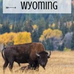 Wyoming Family Vacations- 10 Fun Things to do in Wyoming 3