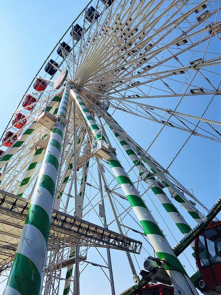 minnesota fair is one of the great things to do in Minnesota with kids