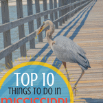 things to do in Mississippi with kids