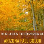 Arizona Fall Color
