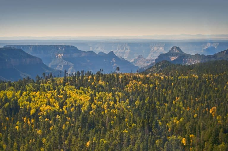 north rim grand canyon looking south by flickr Anita Ritenour