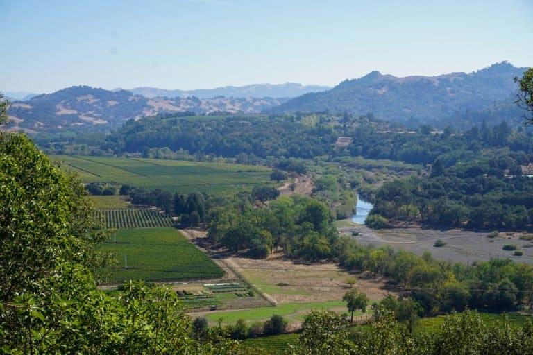 Vinewyards of Sonoma County
