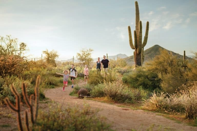 Hiking in the McDowell Sonoran Preserve is one of the best things to do in Scottsdale with kids