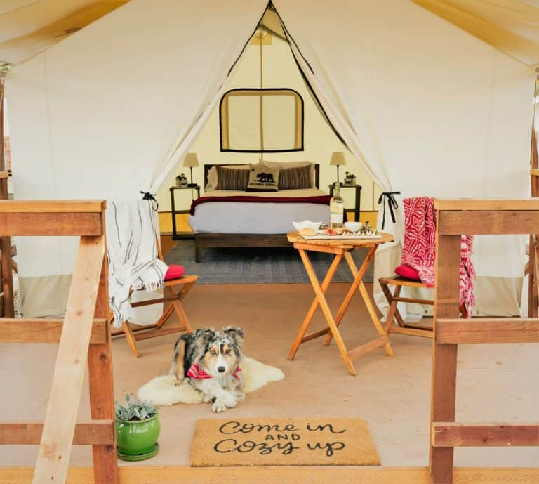 Glamping it up at Wildhaven Sonoma
