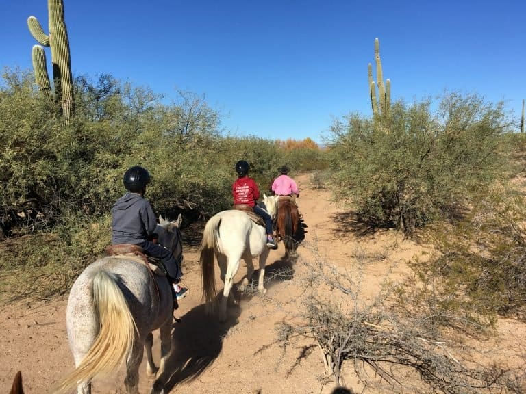 horseback riding in the Sonoran desert in Scottsdale