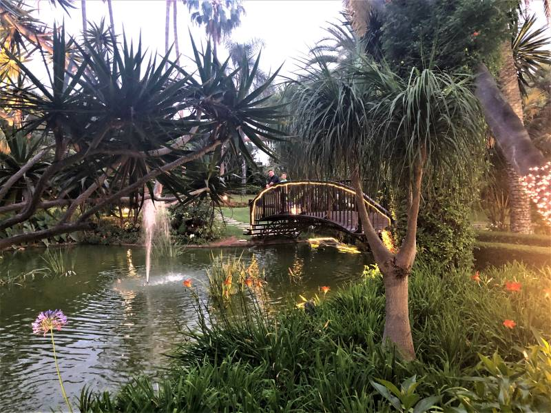 Garden at Hotel Botanico on Tenerife in the Canary Islands