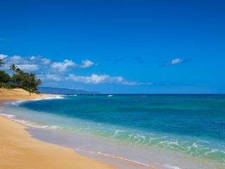 kid friendly beaches in Oahu