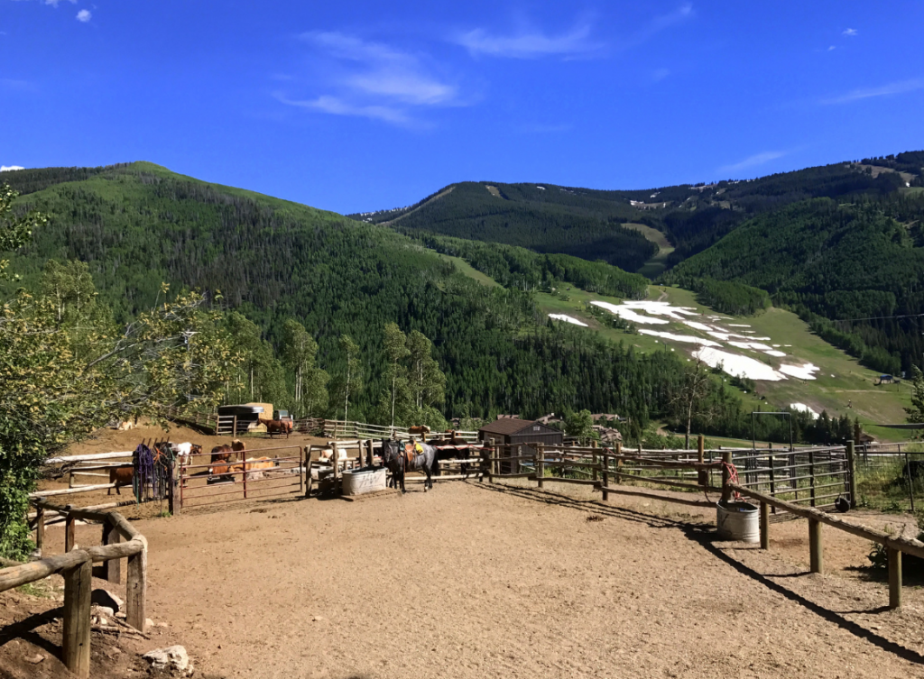 Horseback Riding in Vail