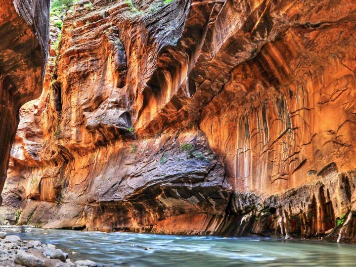 15 Epic Things to do in Zion with Kids