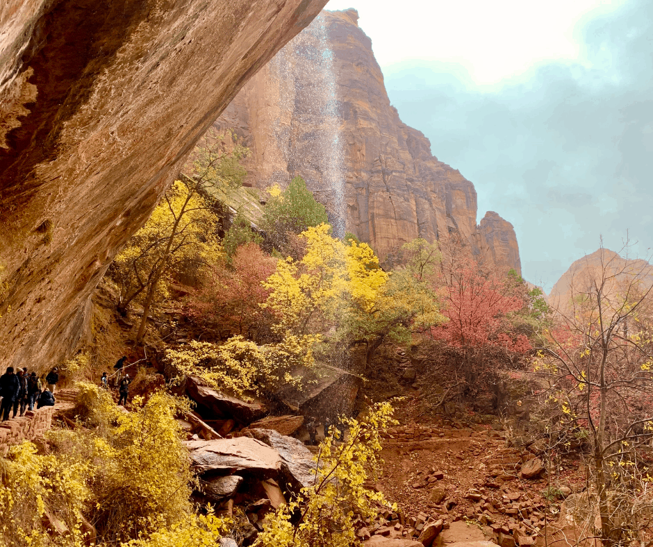 One of the best things to do in Zion with kids is hike to the Emerald Pools
