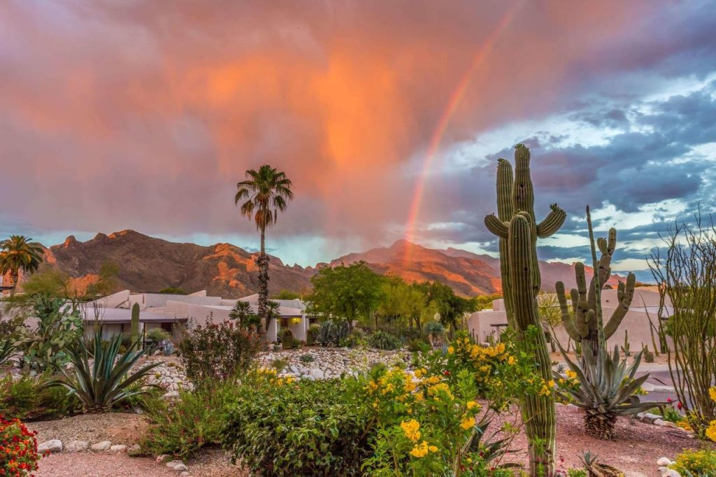 Things to do in Tucson with Kids 5