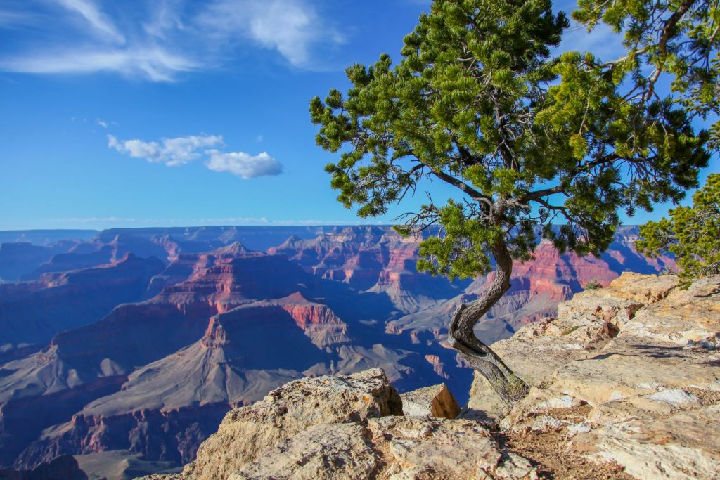 The Grand Canyon is one of the best weekend getaways from Phoenix