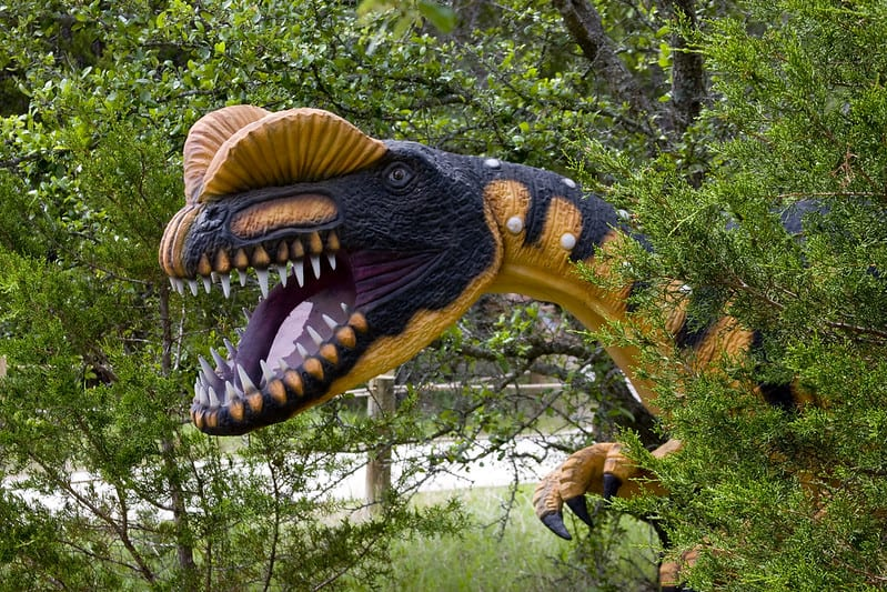 Dinosaur Valley State Park in Glen Rose is one of several great day trips from Dallas for families.