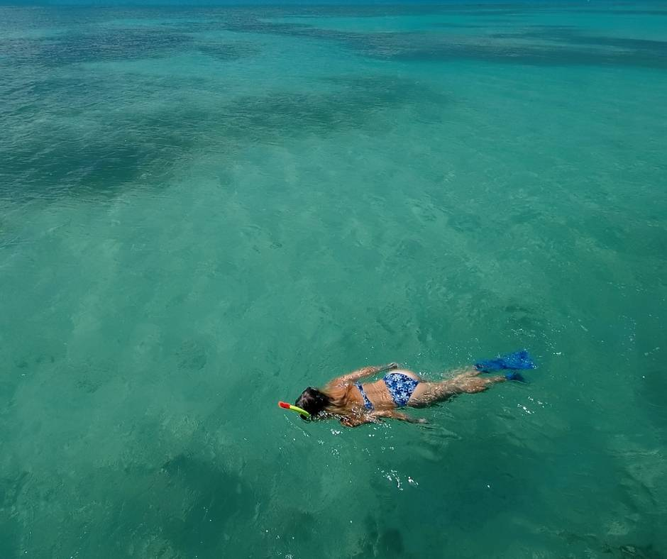 Go snorkeling on your Dry Tortugas Day Trips from Key West