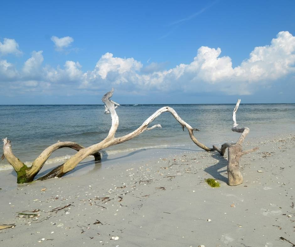 Cayo Costa State Park in Florida