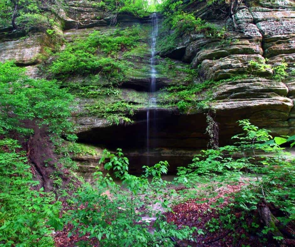 Starved Rocks State Park from Chicago