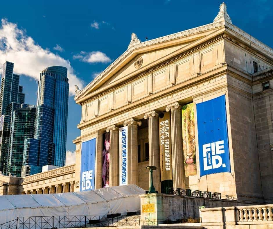 10 Fun Things To Do in Chicago with Kids 4