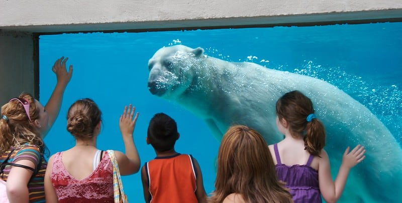 10 Fun Things To Do in Chicago with Kids 5