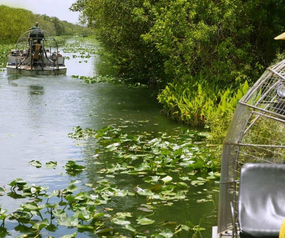 Headed to Miami with kids? Try and airboat ride in the Everglades