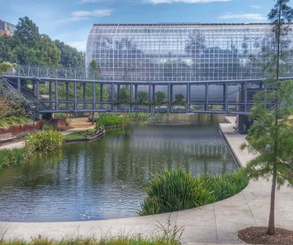 One of the fun things to do in OKC with kids is visit the Crystal Bridge Tropical Conservatory