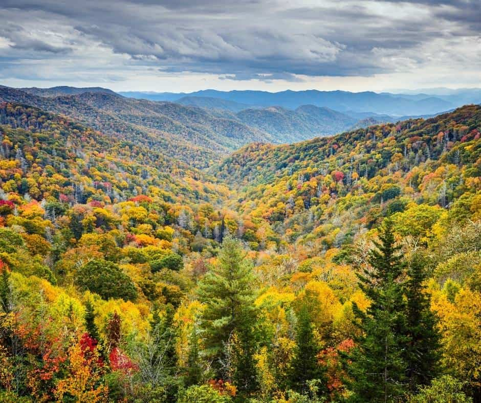 One of the best national parks for kids is the Great Smoky Mountain National Park