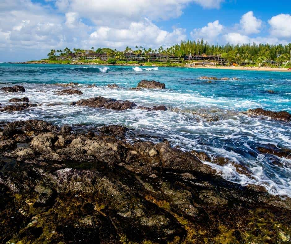 Great snorkeling can be found in Napili Bay