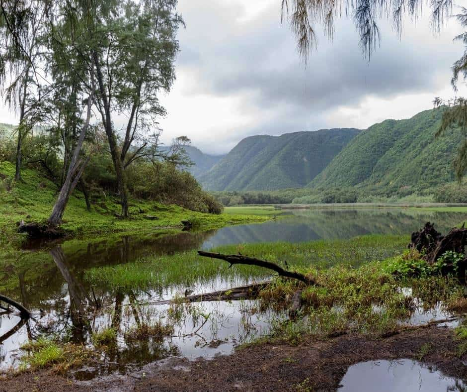 Things to do on the Big Island with kids Pololu Valley