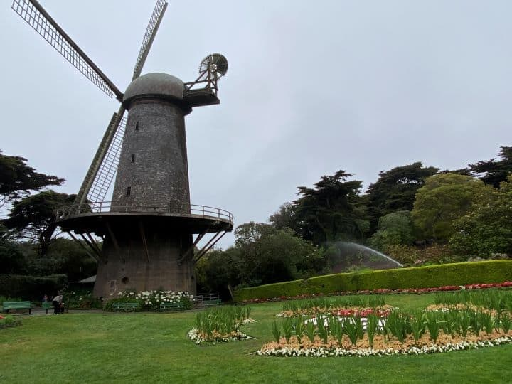 Things-to-do-in-Golden-Gate-Park-Windmills