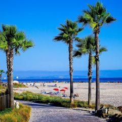 12 Best Beaches Near San Diego for Families