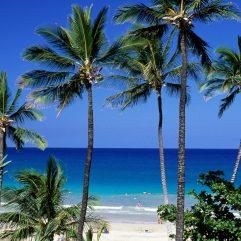 The 15 Best Beaches in Hawaii: Big Island
