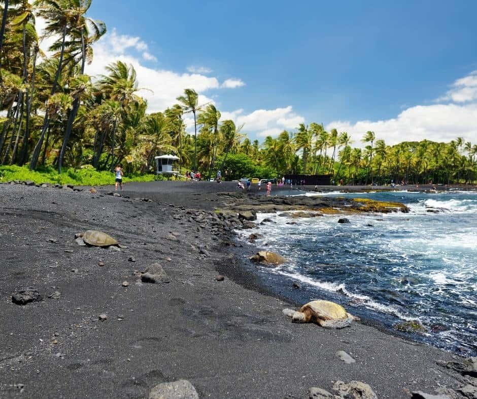 One of the best Big Island beaches is Punaluu Black Sand Beach