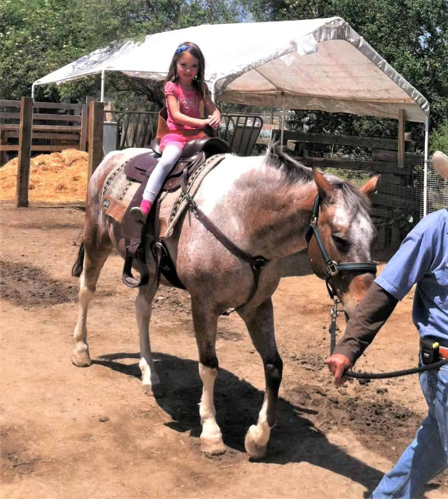 Visiting Zoomars is one of the fun things to do in Orange County with kids