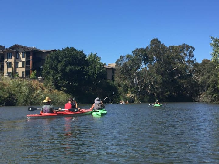 things-to-do-in-the-Napa-Valley-with-kids include kayaking on the river