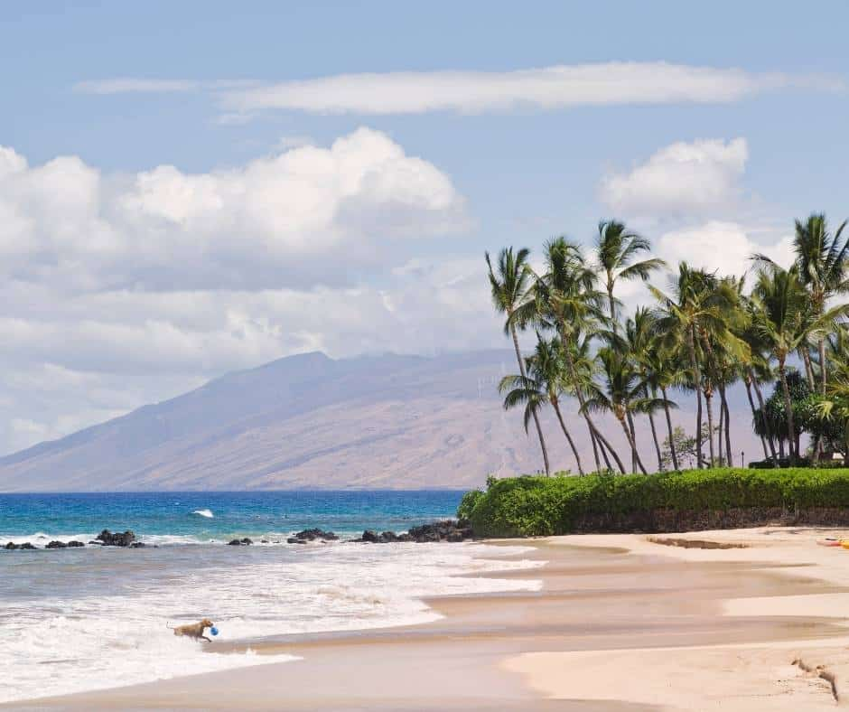 This image has an empty alt attribute; its file name is Best-Beaches-in-Maui-Palauea-Beach.jpg