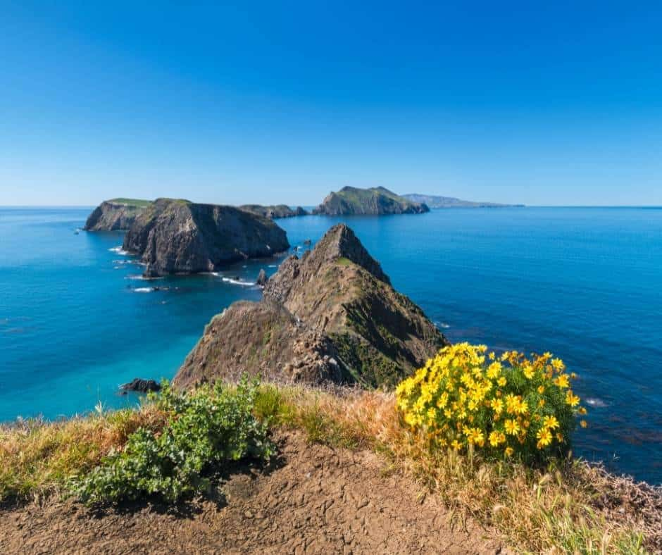 The 15 Best National Parks in California 1