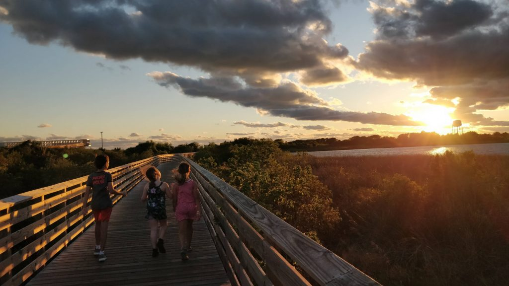 8 Fun Things to Do in Orange Beach with Kids 2