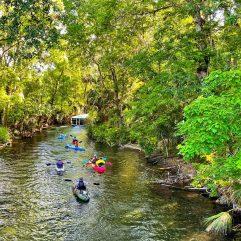 10 Fun Things To Do In Ocala, Florida