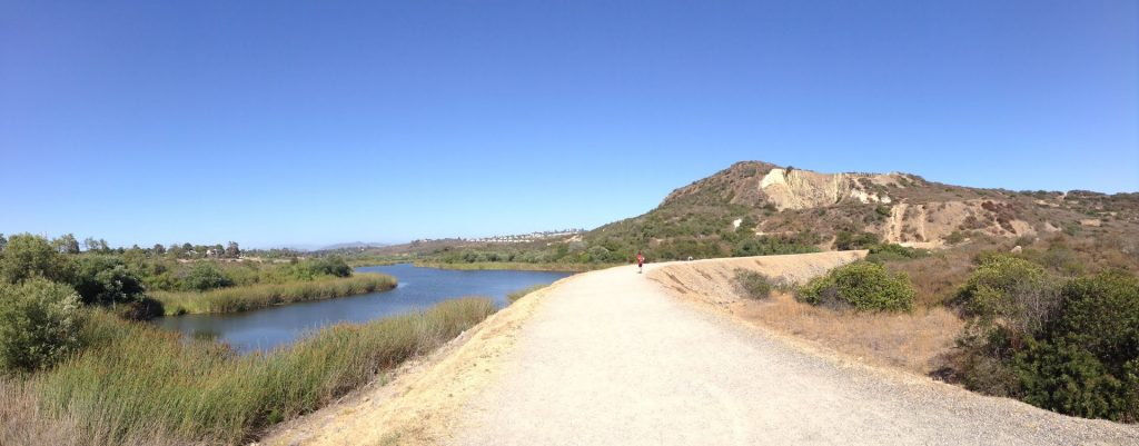 One of the fun things to do in Carlsbad CA is take a hike