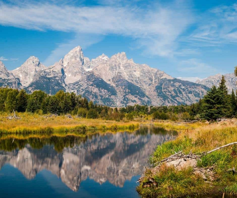 Schwabacher Nature Walk is one of the best hikes in Grand Teton National park for families