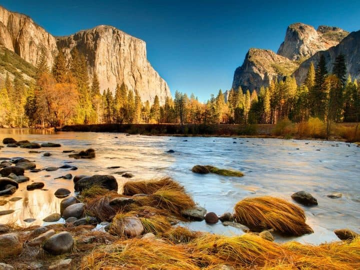 The 15 Best National Parks in California