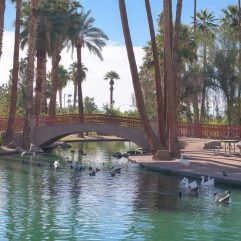 The 15 Best Parks in Phoenix, Arizona for Families