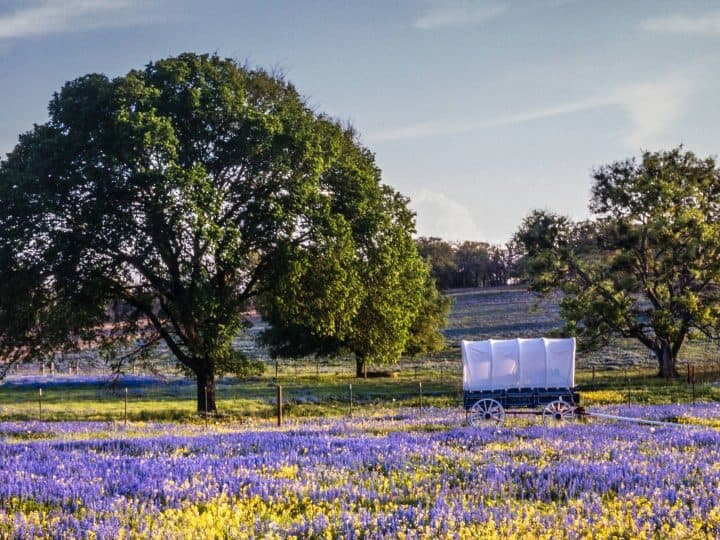Texas Hill Country Road Trip Itinerary