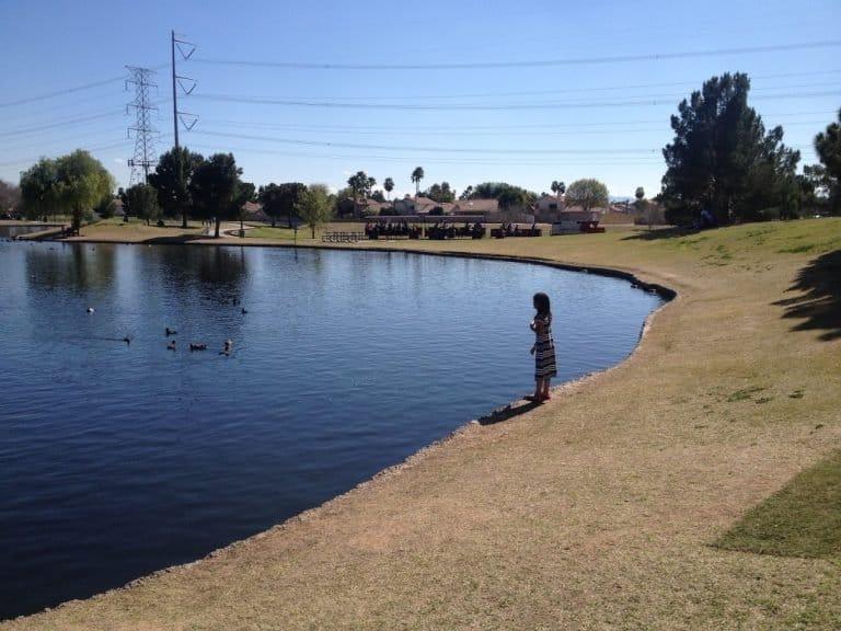 Freestone Park in Phoenix